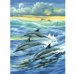 Junior Painting by Numbers - Dolphins