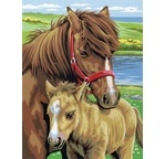 Peinture par N° Junior DUO -  Lot de 2 CHEVAUX