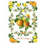 Transfert déco DIAM'S Fleur d'oranger 15X21