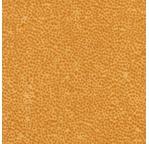 PAPERTREE 56*76 125g GUM Sahara