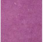 PAPERTREE 50*70 LOKTA PAPER Lilac