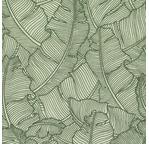 PAPERTREE 50*70 100g PARADISE Naturel/ Vert