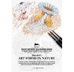 PEPIN Livre à colorier pour artiste 30x42cm Nature Haeckel pp 19,95€