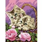Peinture par N° débutant - Les Chatons rêveurs