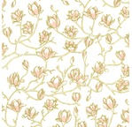 PAPERTREE 50*70 100g MAGNOLIA Nude