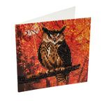 Crystal Art Card Kit 18x18cm Autumn Owl