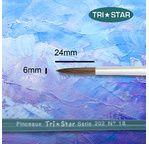 Round brush - Bristles - White hair - Varnished handle - n°6