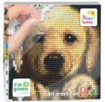 PIXEL Kit créatif tableau 12x12cm - Chien