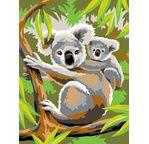 Peinture par N° débutant - Koalas