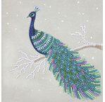 Crystal Art Card Kit 18x18cm Pretty peacok