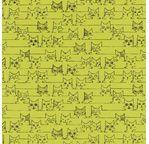 PAPERTREE 50*70 100g MAOW Citron vert