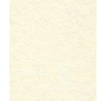 PAPERTREE 50*70 110g STARLIGHT iridescent 001 Ivoire