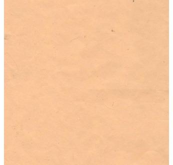 PAPERTREE DS 60g PAPIER BANANE UNI Pêche