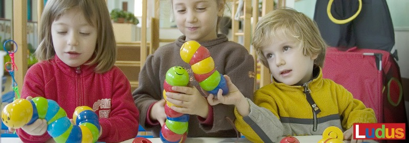 LUDUS Educational Toys